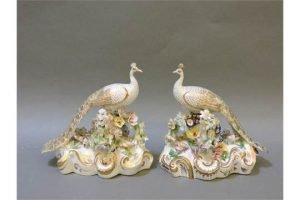 Bloor Derby peacocks