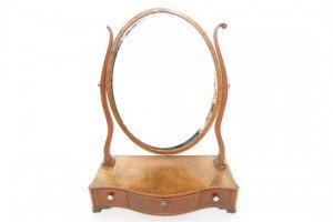 swing toilet mirror