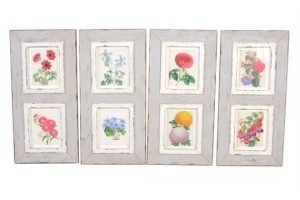 lithographs of flowers